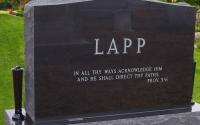 Lapp Back 2008