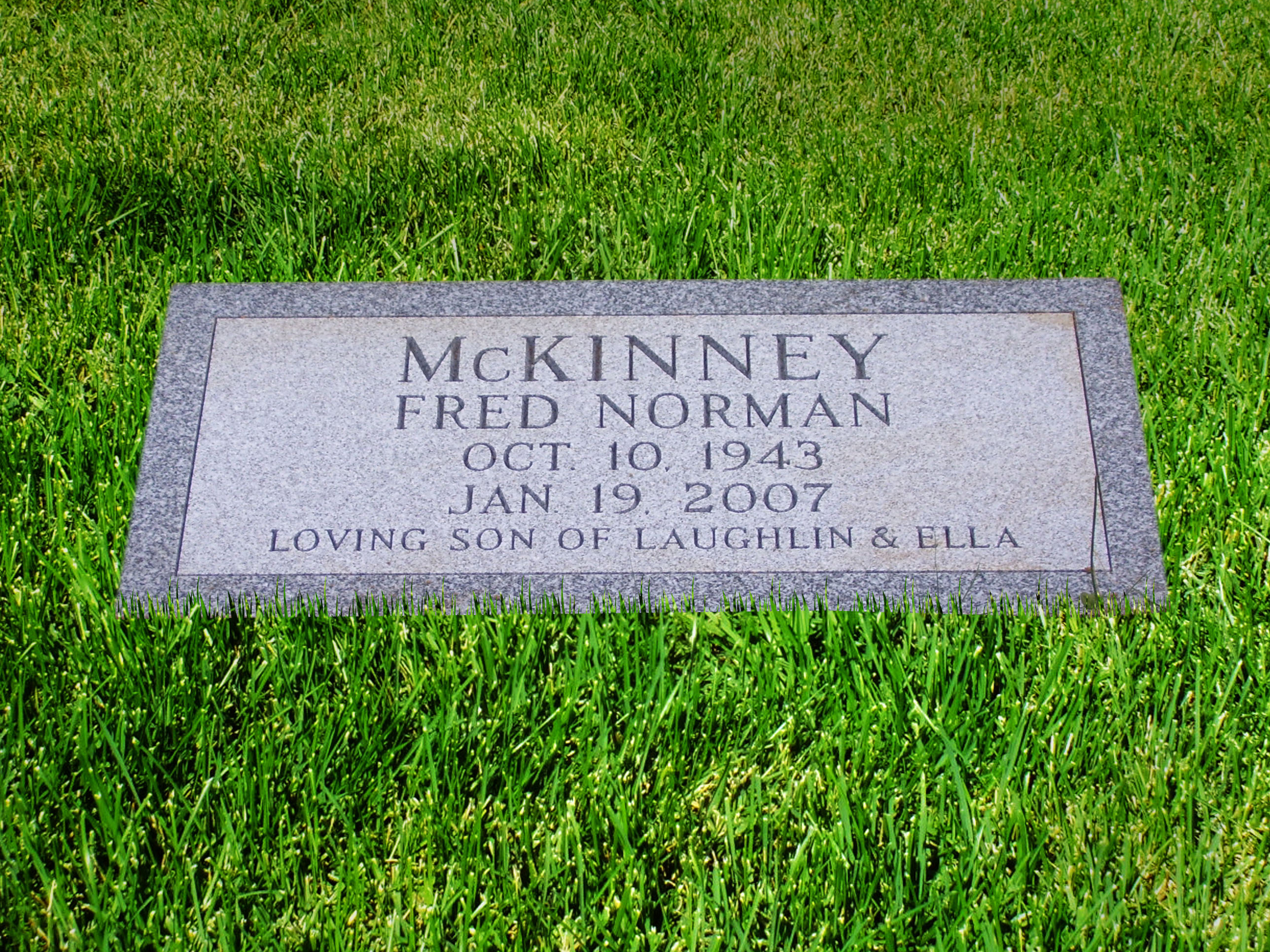 McKinney Flush 2008